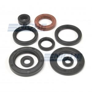 Suzuki LT500R Engine Oil Seal Kit 19-84401