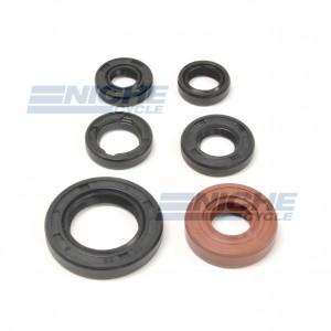 Honda TRX30EX Engine Oil Seal Kit 19-84300